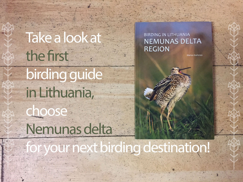 first-birding-guide-lithuania-nemunas-delta